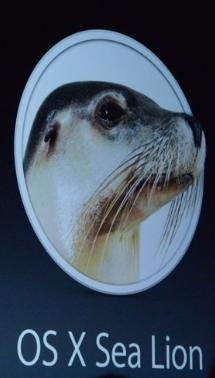 OSX Sea Lion